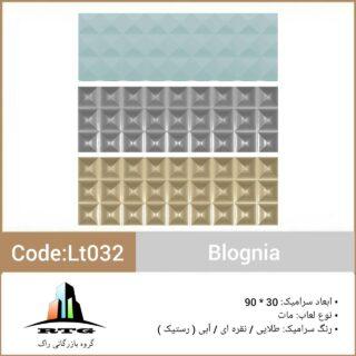 leonblogniacodelt032